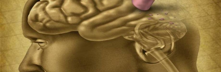 Una ricetta contro l'Alzheimer
